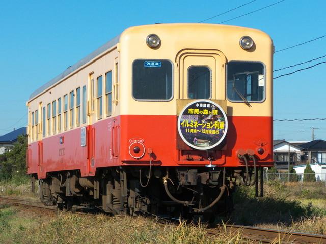 P1280633.jpg