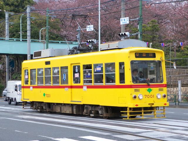 P1320320.jpg