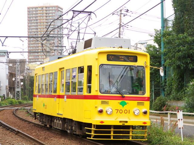 P1340626.jpg