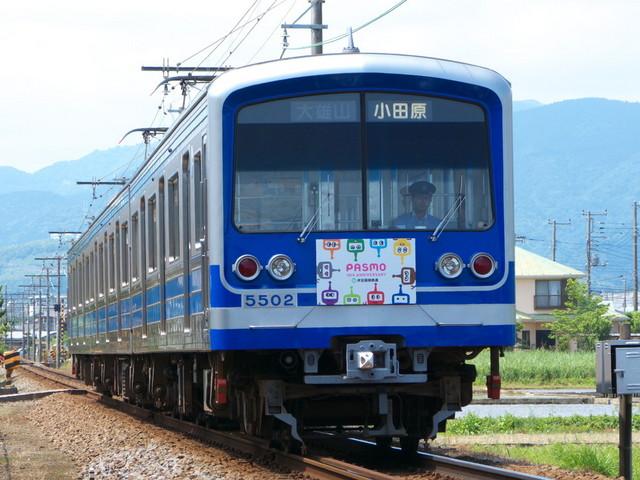 P1480006.jpg