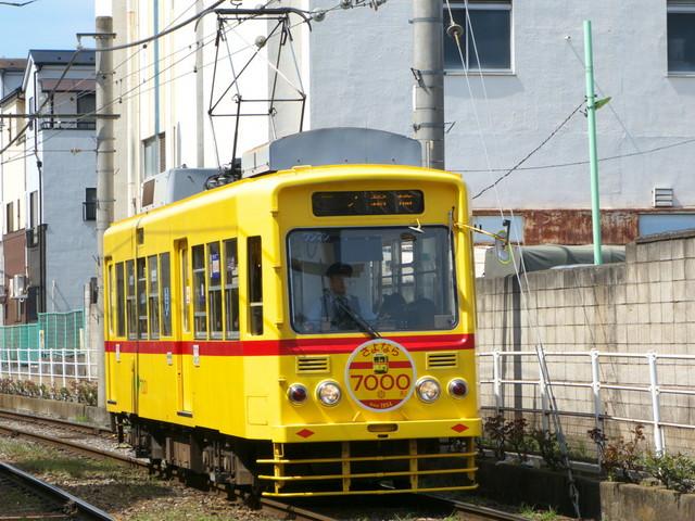 P1450606.jpg