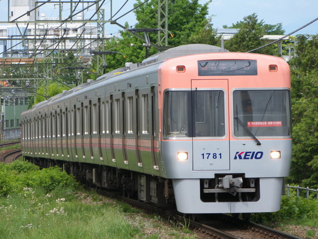 P1470128.jpg