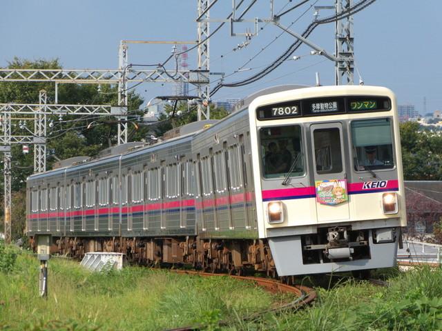 P1510045.jpg