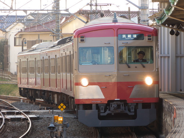 P1540747.jpg